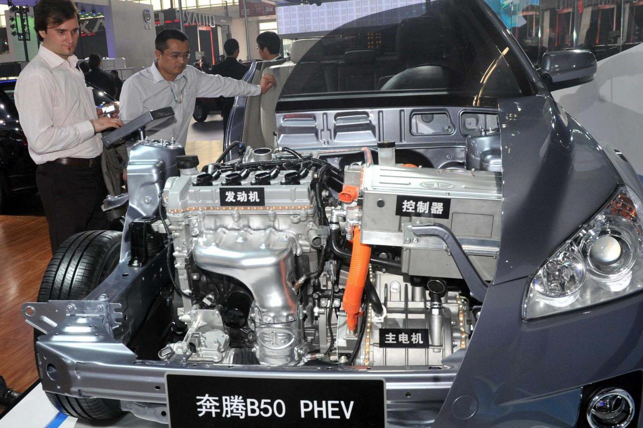 中國希望培育出龍頭電動車車企。
