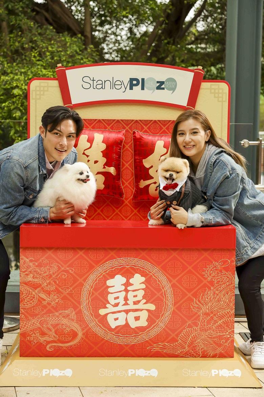 赤柱廣場將以「犬」愛方程式為主題,舉辦為期一個月狗狗主題活動。