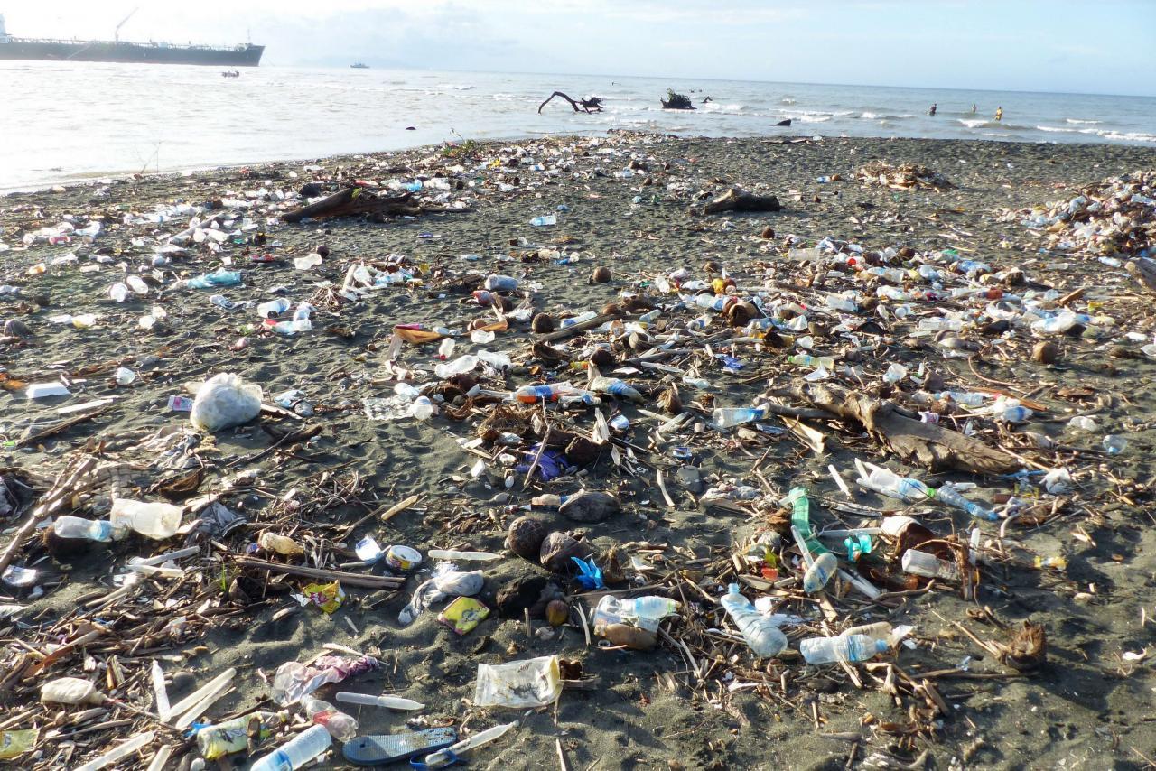 聯合國世界海洋會議指現時每分鐘都有幾乎一噸的垃圾被倒進海洋。