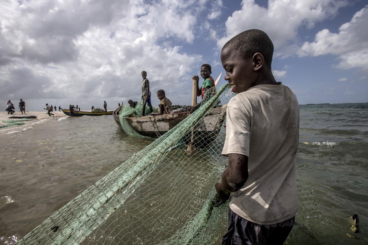 非洲漁業資源豐富,惟當地廢棄的塑膠袋處理不當,影響到當地水源,危害及漁業和各類海洋生物。