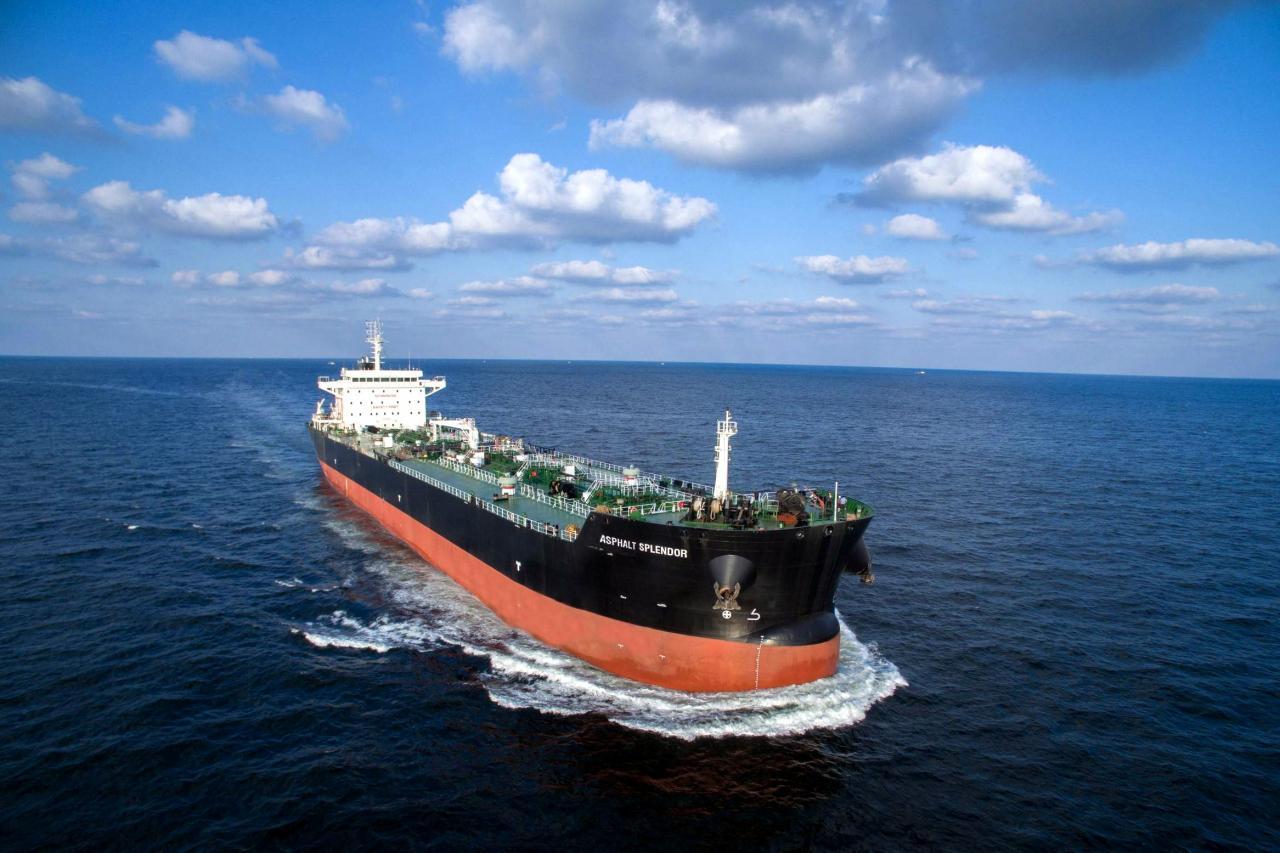 公司目前經營一支船隊,其中五艘船舶按期租運營,期租期限介乎二至十年。