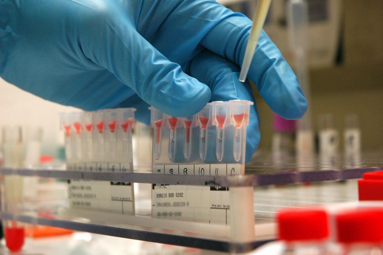 產品涵蓋血液學及體液、免疫、臨床化學及即時檢驗分析儀、試劑及其他耗材。