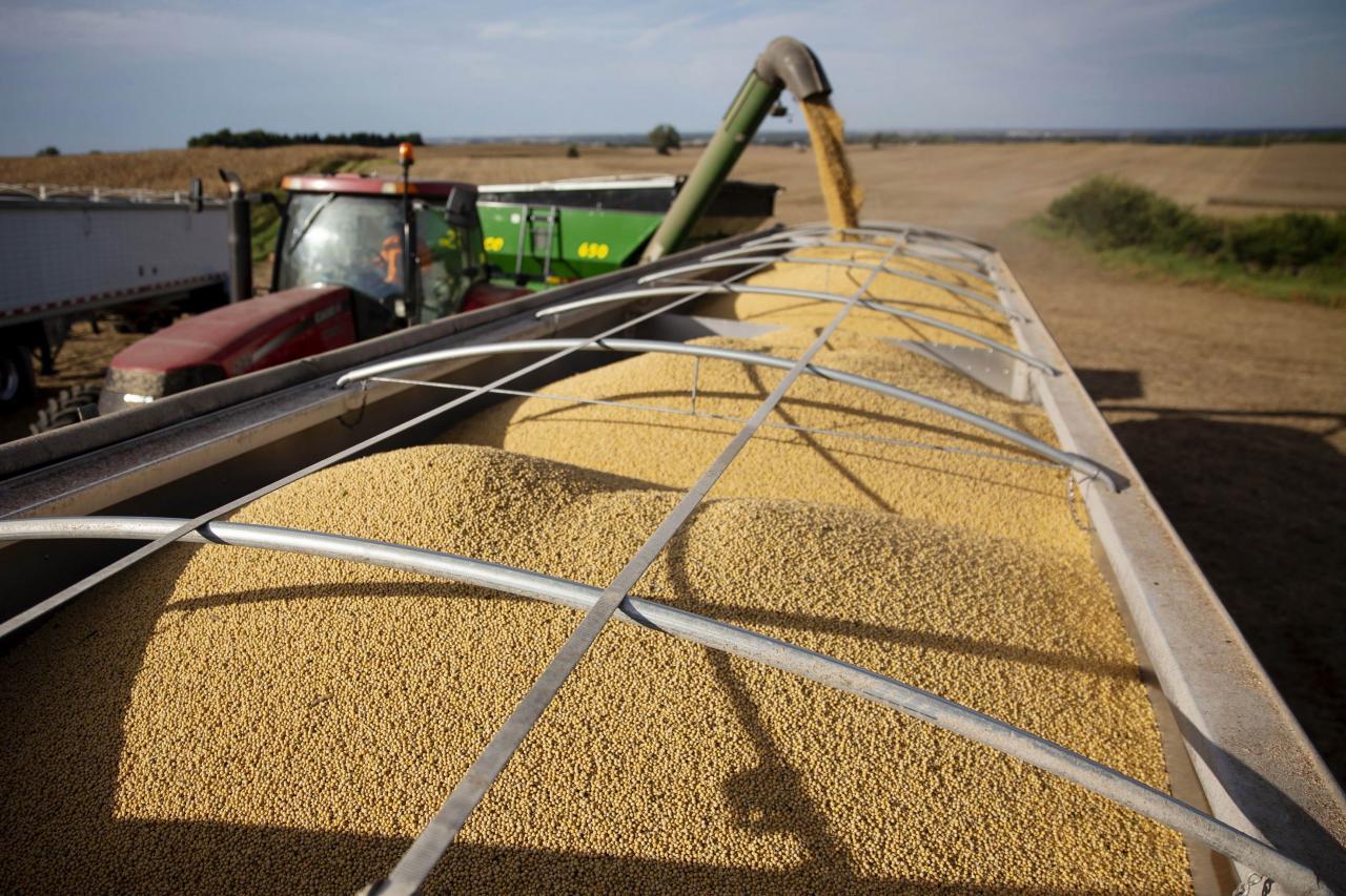 美方指中方違反承諾,未有增加採購大豆。
