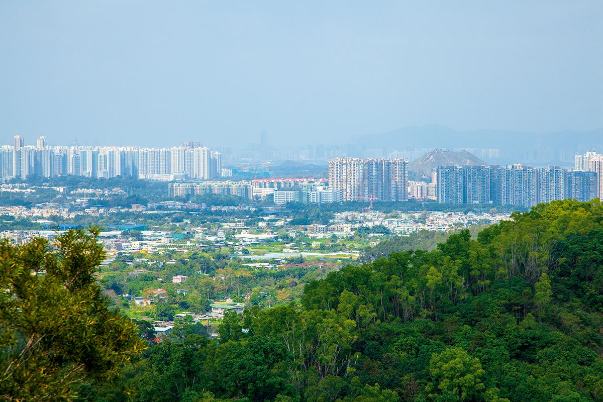 元朗南部有待發展土地估計多達200公頃。