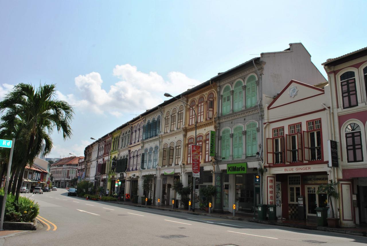 新加坡南部第二區的丹戎巴葛地段,投資價值高。