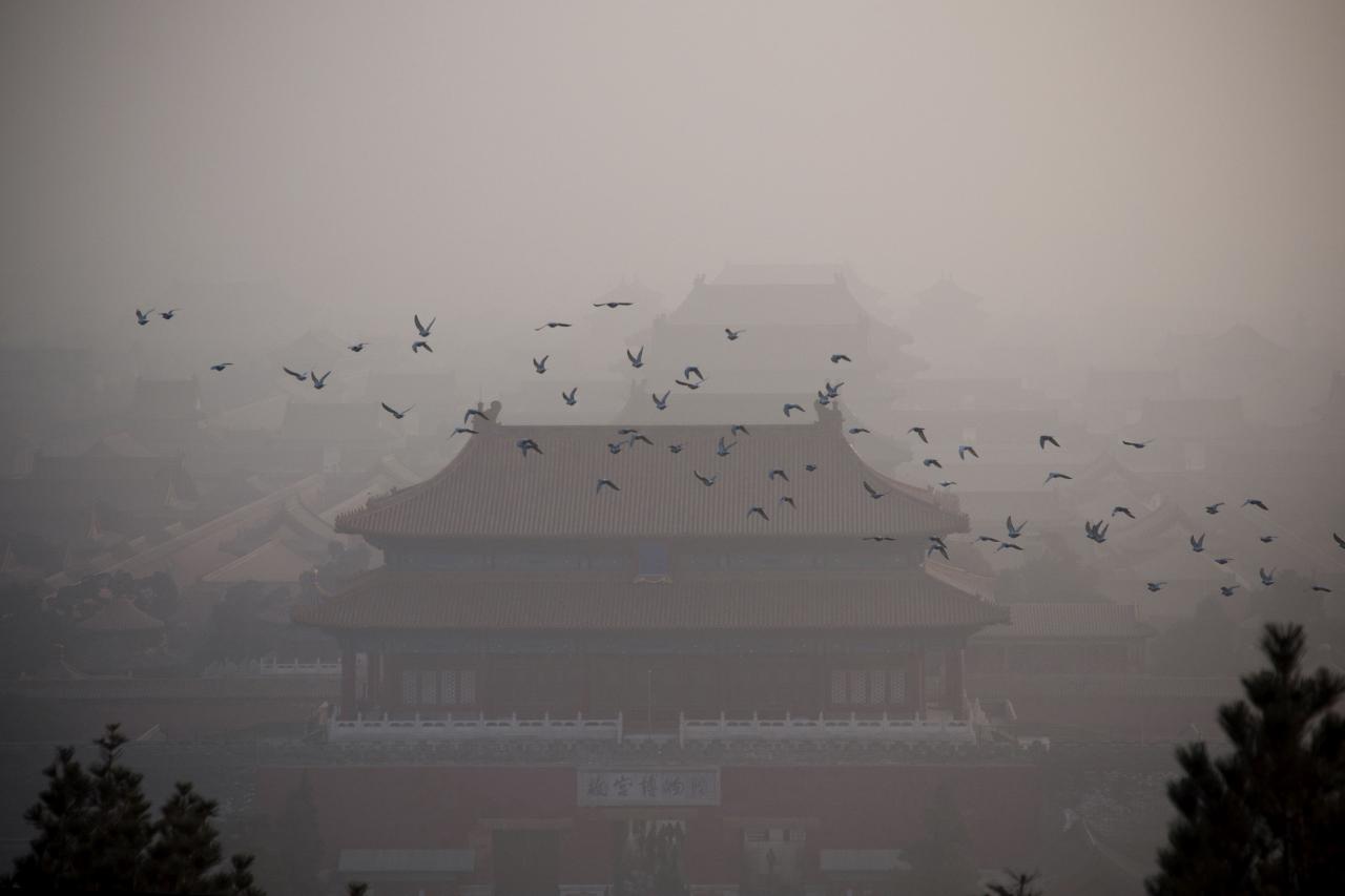 北京、上海、廣州、深圳等特大型城市中,汽車排放成為大氣污染物細顆粒物的首要來源。