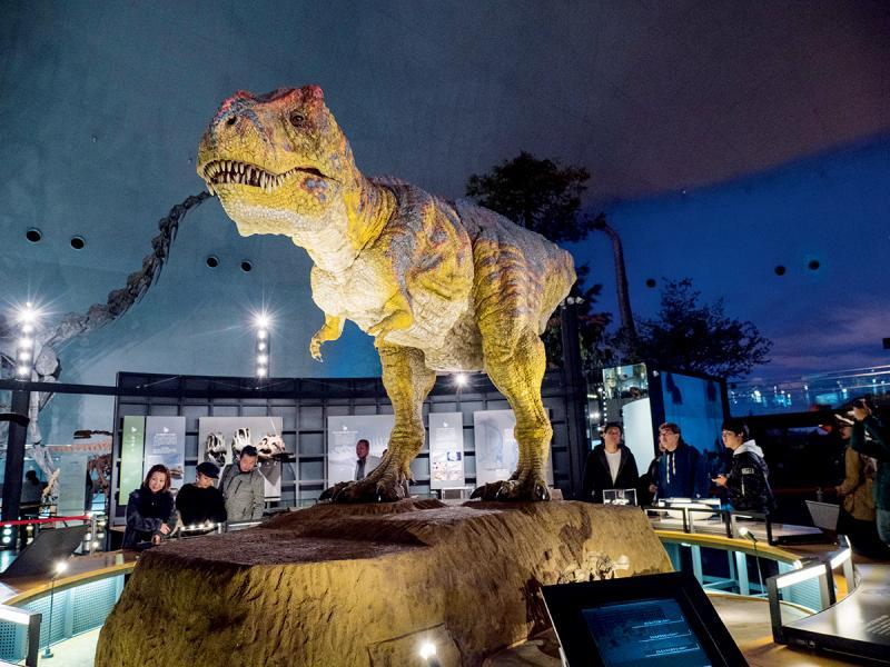 福井縣立恐龍博物館是福井縣最具聲名的地方,吸引不少遊客慕名而來。