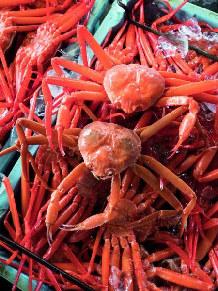 紅楚蟹撈上來煮熟後都會反轉來放,以免蟹膏和蟹精華流失,漁民應我們拍照才一反正面給我看其「真面目」!