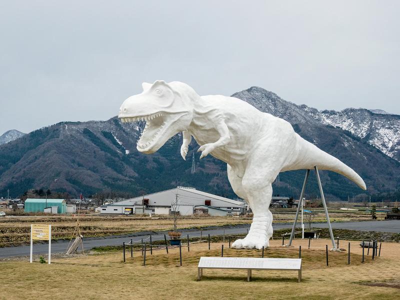 恐龍館外不遠,會看見一具由越前和紙製成的巨型恐龍屹立在田野之間。