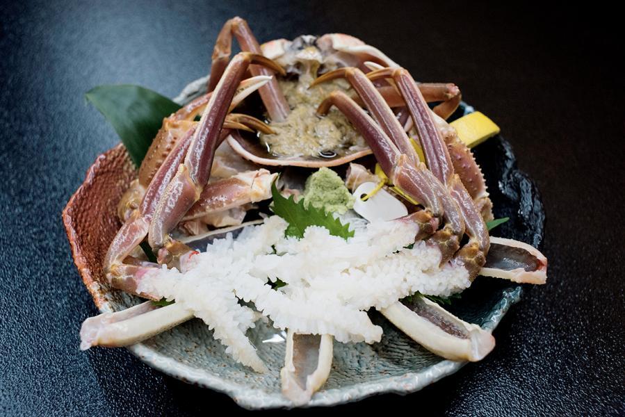 遊越前蟹是福井的著名美食,肥厚的蟹肉做刺身甚為好吃。
