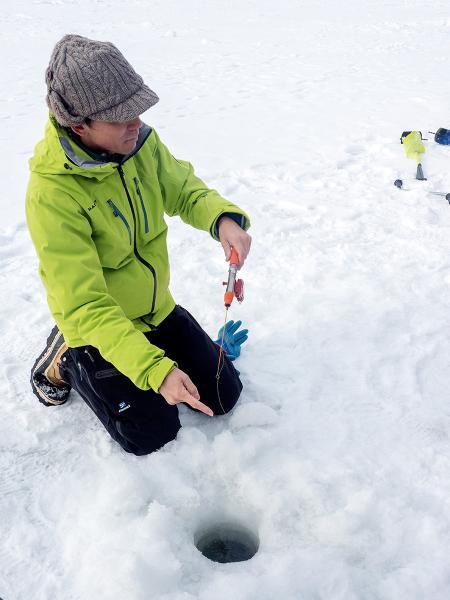 冰湖釣魚的魚餌為蒼蠅的幼蟲,但飼以芝士及蒜,香氣會吸引西太公魚上釣。