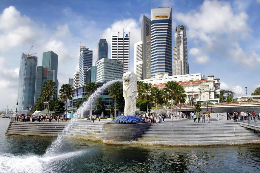 新加坡政府於不久將來計畫擴展新加坡鐵路網絡。