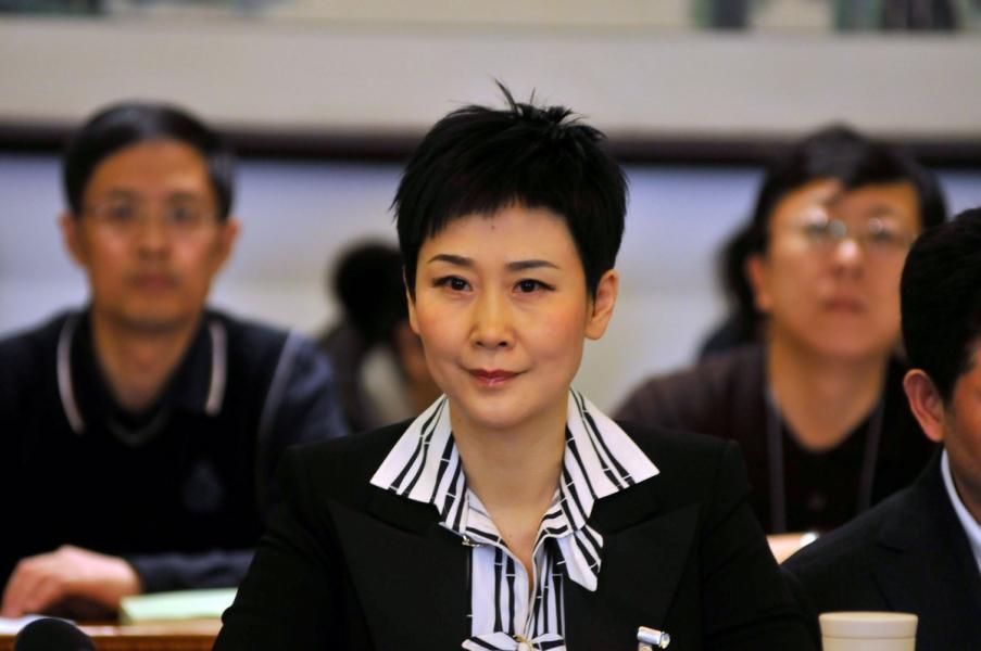黎亮過去參與能源業務,很多都是與「電力一姐」李小琳有關。