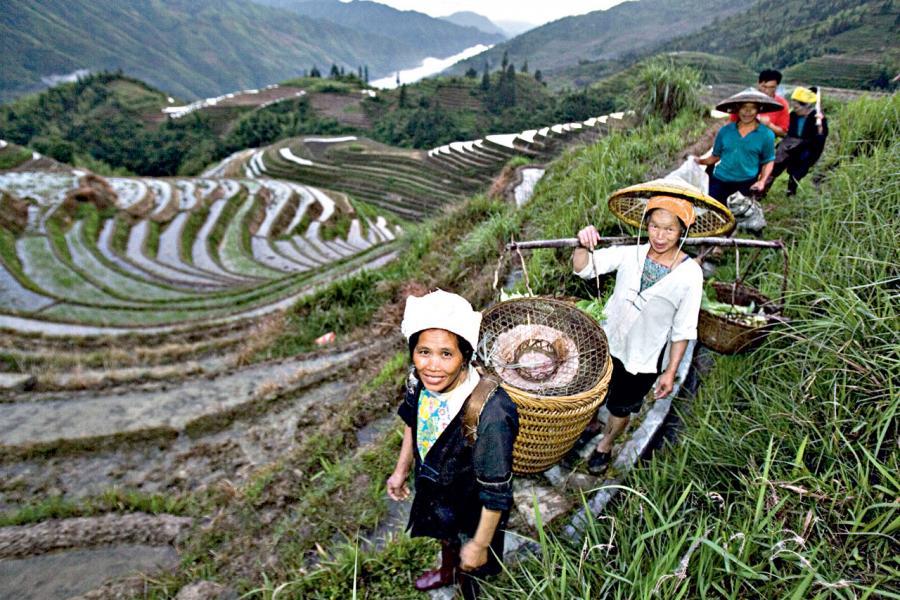 中國政府會投入更多資金到農業領域,發展農村。