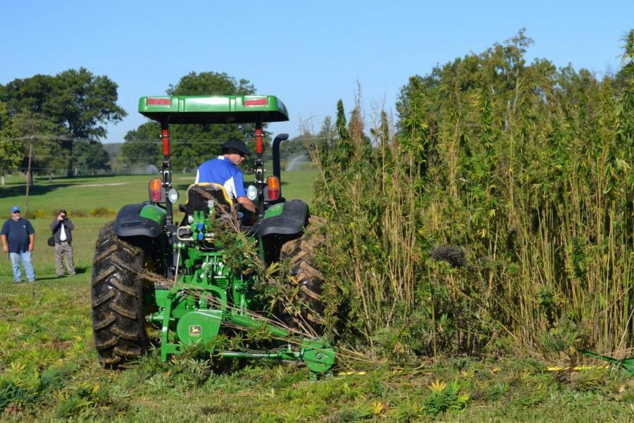 荷蘭是全球第2大農業食品出口國。