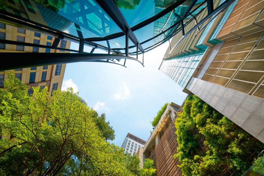 近年可持續發展在建築界成為了炙手可熱的話題,將綠色元素融入建築,既環保也為住客提供更舒適的生活環境。