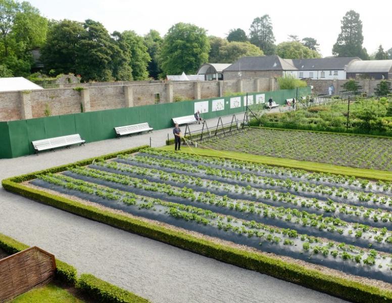 愛爾蘭農業、園藝及畜牧業屬國內的重要生產版塊。