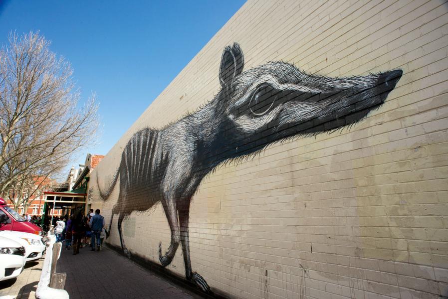 費利曼圖不僅氣氛閒逸,還充滿藝術氣息,不時可見街上的壁畫。