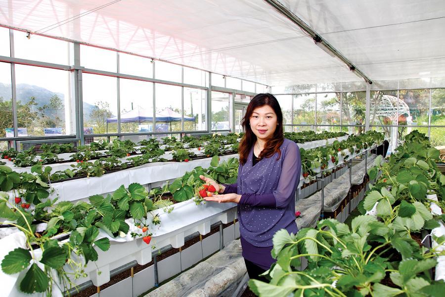 大棠有機生態園業務拓展經理梁麗詩。