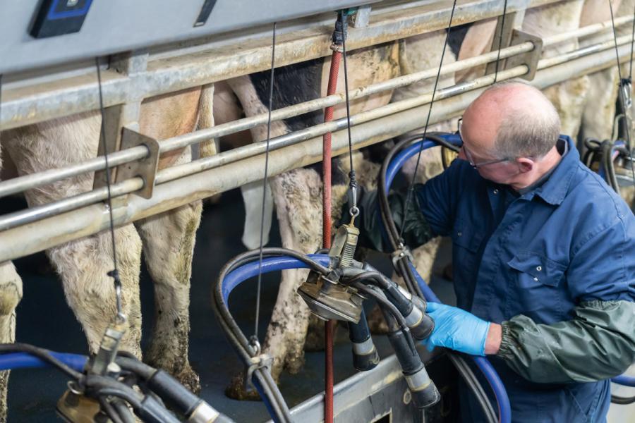 來自荷蘭、德國及比利時的奶農成員,均受到荷蘭乳業協會監管。