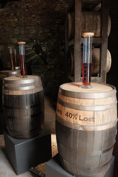 現場展示木桶製作及威士忌的發酵過程。