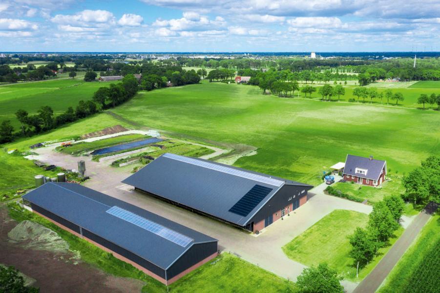 由Broekroelofs家族經營的自家農場位於荷蘭中部城市阿默斯福特一個名為Brucht的小鎮中。