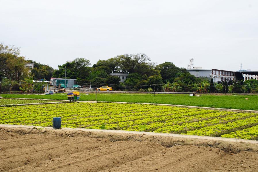 本地發展商積極透過補地價將農地轉換成住宅及商業用地以增加土地儲備。