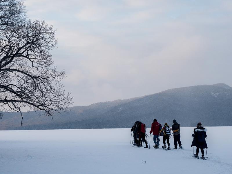 阿寒湖冬天會結冰,但冰層厚薄不一,切勿自行到湖上行走,以免發生意外。