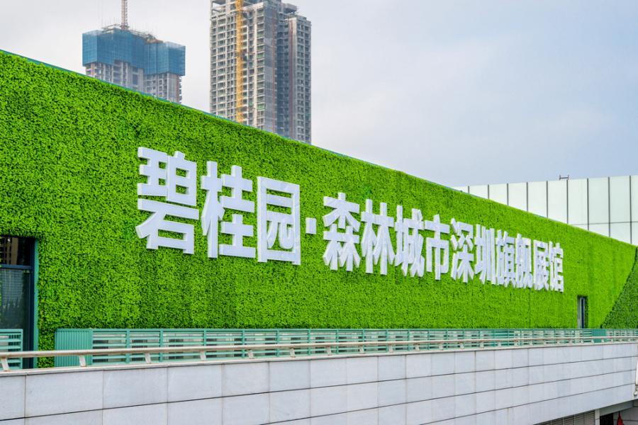 碧桂園出資6.1億元九龍城賈炳達道的舊樓重建項目。