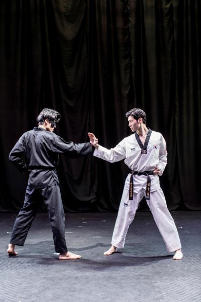 跆拳道是韓國的國粹,於2000年正式納入為奧運比賽項目。