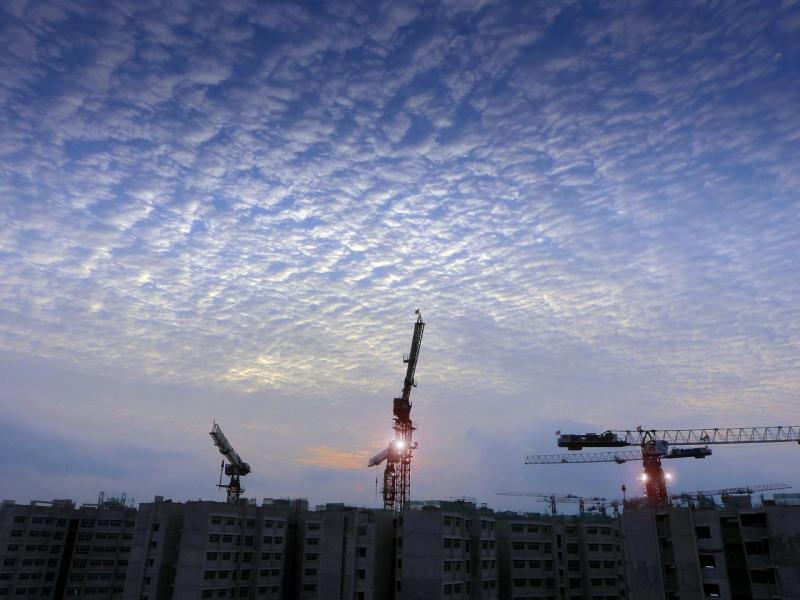 過去數年新加坡政府減少了政府土地出售計畫下招標的地塊數目。