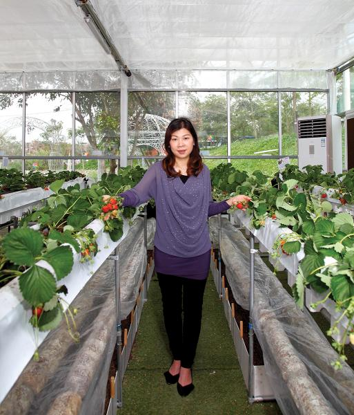 梁麗詩認為,全自動運作的太陽能溫室,可促進環保及農業可持續發展。