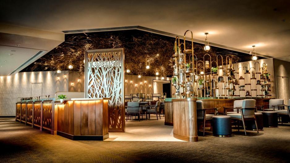 毗鄰Aulis的姊妹餐廳Roganic剛於2月中正式開幕,奉行「farm-to-table」餐飲理念,並供應由Aulis研發的菜式,但定價則較親民。