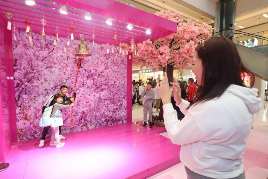 今年的主題裝置,加入了櫻花玫瑰花海,成為市民其中一個熱門打卡位。
