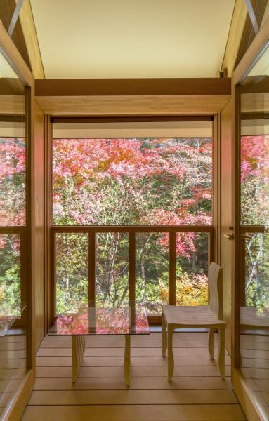 從客房私人 露台欣賞到的美景。