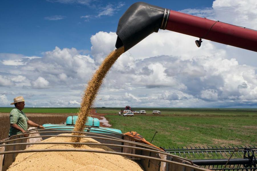 中國對美國大豆推出報復性關稅,預計會對雙方都造成影響。