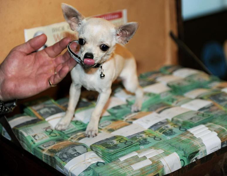 去年澳洲超級富豪的數量達1,260人,資產總值達2,690億美元。